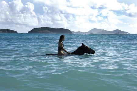 图集:温暖海岛游 阳光最贵的度假胜地